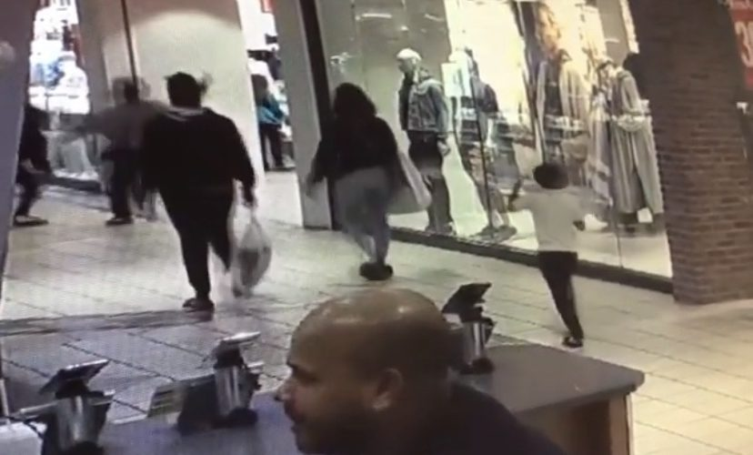 thief tries to rob woman in mall