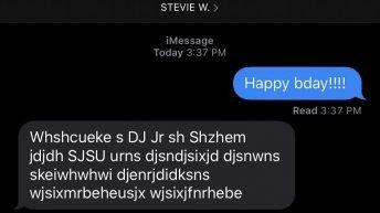 Happy Birthday Stevie Wonder text