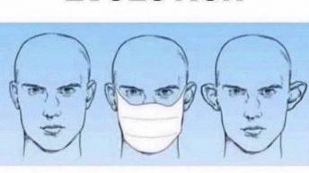 Coronavirus evolution meme
