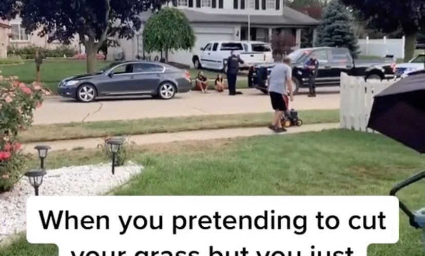 Nosey neighbor pretends to cut grass