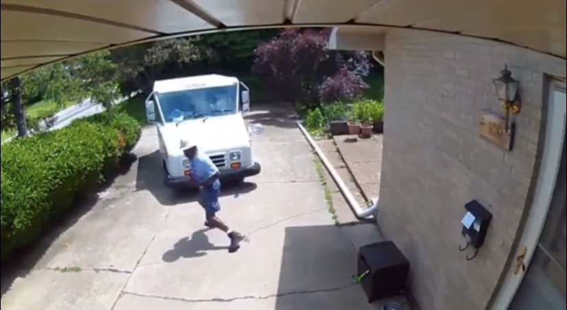Mailman gets away from dog