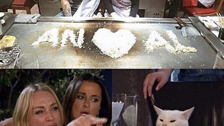 An loves Al angry cat meme
