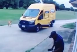 delivery man chased by dog