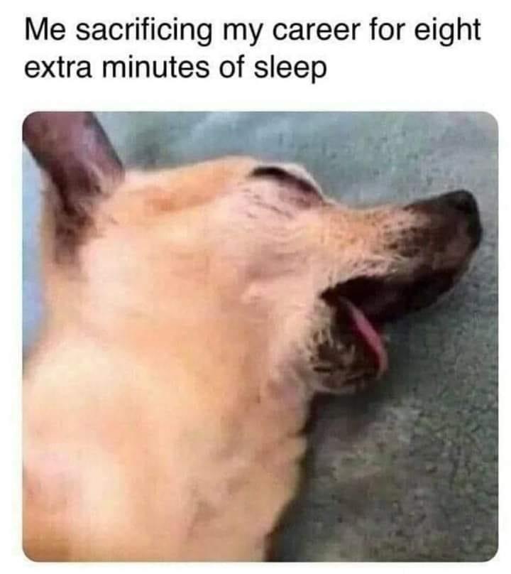 Me sacrificing my career for eight extra minutes of sleep meme