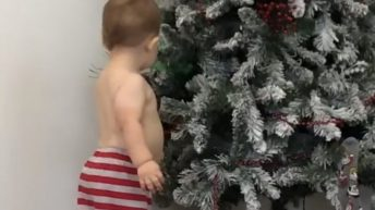 Toddler fascinated with Christmas tree