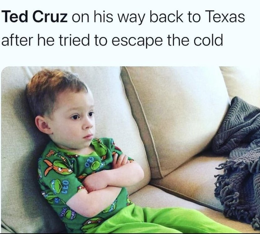 Ted Cruz on his way back to Texas after he tried to escape the cold Gavin meme