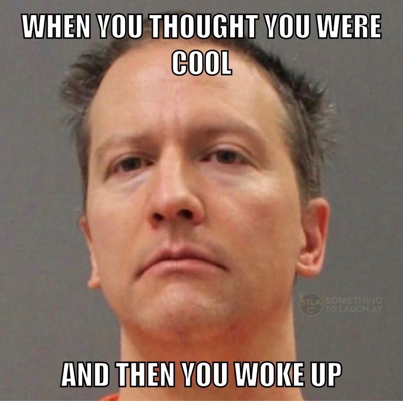 When you thought you were cool and then you woke up Derek Chauvin meme