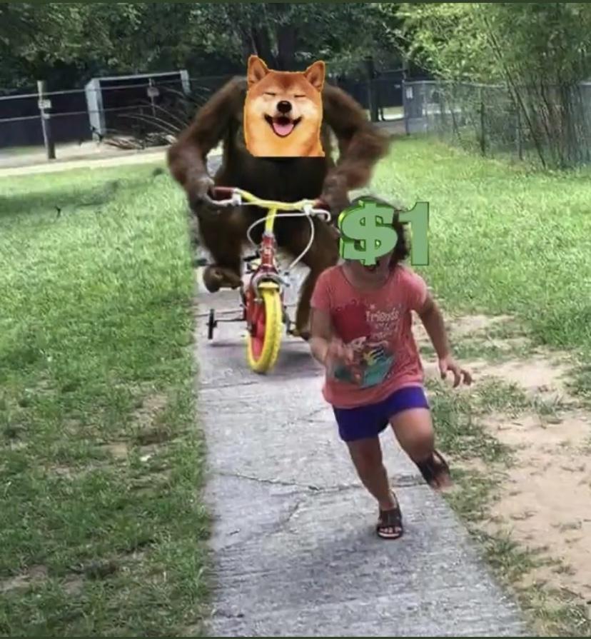 Dogecoin to $1 meme