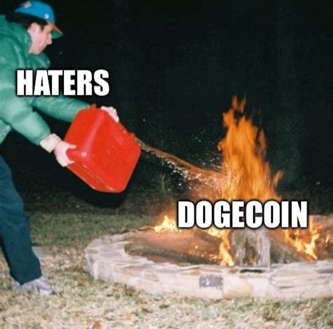 Haters vs dogecoin fire meme