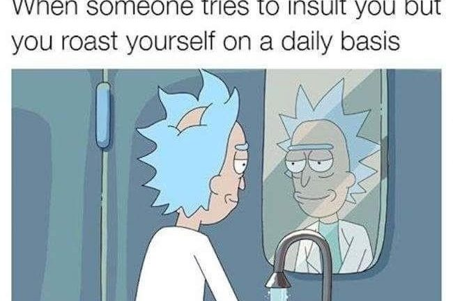 When someone tries to insult you but you roast yourself on a daily basis Rick and Morty meme